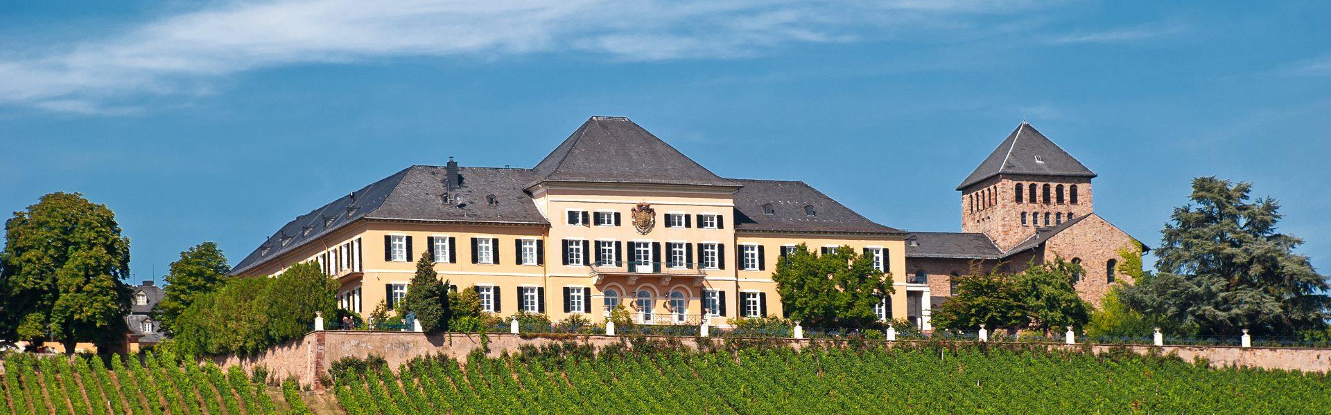 Immobilienmakler • Rheingau • Mainz • Wiesbaden - Mills Immobilien