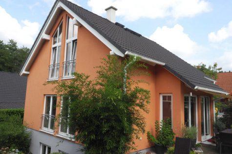 Modernes freistehendes Einfamilienhaus mit allem was das Herz begehrt, 65366 Geisenheim, Einfamilienhaus