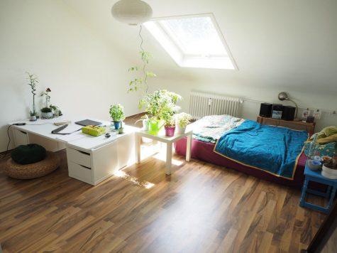 1 Zimmer Appartement in Mainzer Innenstadt, 55116 Mainz, Wohnung
