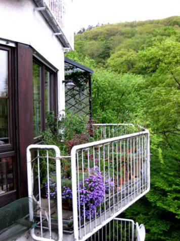 Am Waldrand: 3,5 ZKB-Balkon + 1 ZKB-T, Garten (2 Wohnungen = 1 Preis), 65388 Schlangenbad, Wohnung